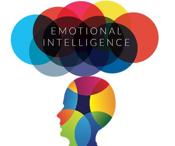 هوش هیجانی توانایی شناخت و مدیریت احساسات است؛ اینکه چگونه بتوانیم از این احساسات بهترین نتایج را بگیریم. (تاثیر هوش هیجانی بر فروش)